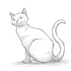 crna baka mačkica cijev porno slike ebanovine mlade